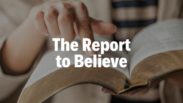 The Report to Believe - 4/21/19