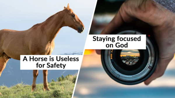 A Horse is Useless for Safety / Staying focused on God 7-7-19