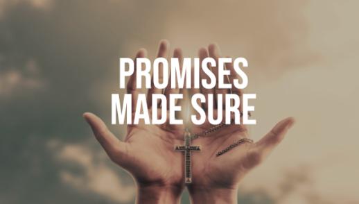 Sunday Snapshot: Promises Made Sure 4/5/20
